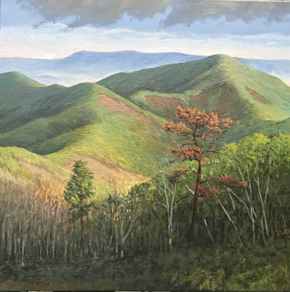 2 Mile Overlook 24X24  oil on canvas: Property of the Shenandoah National Park Permanent Collection