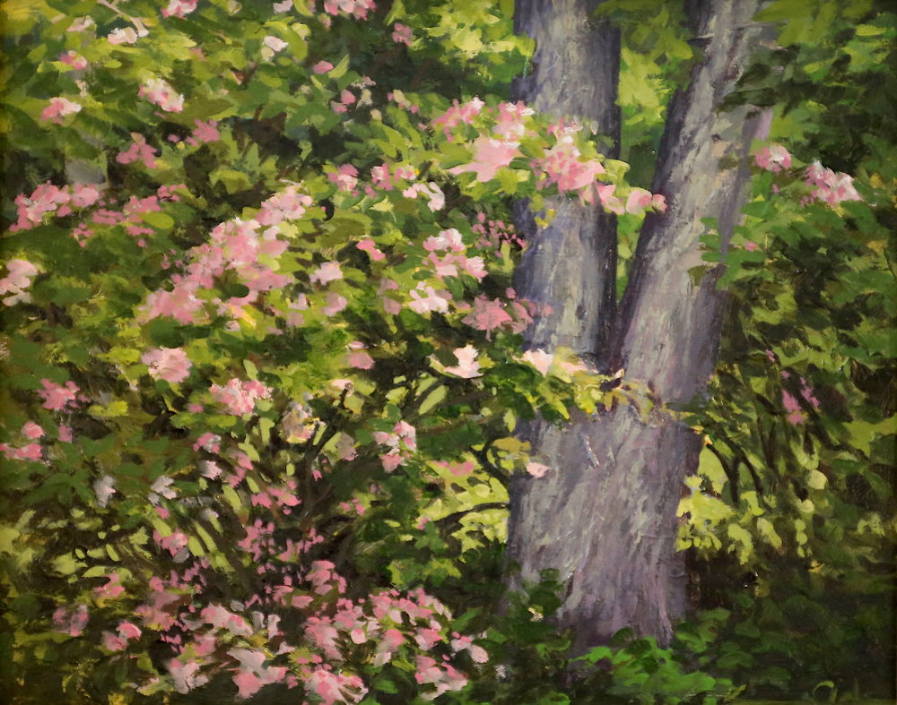 Mountain Laurel  8 X 10 oil on panel