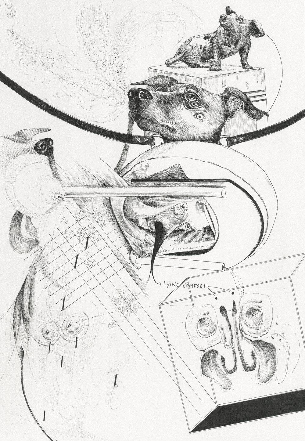 """""""Olfactory Vivisection"""" 2017, 7x10"""""""