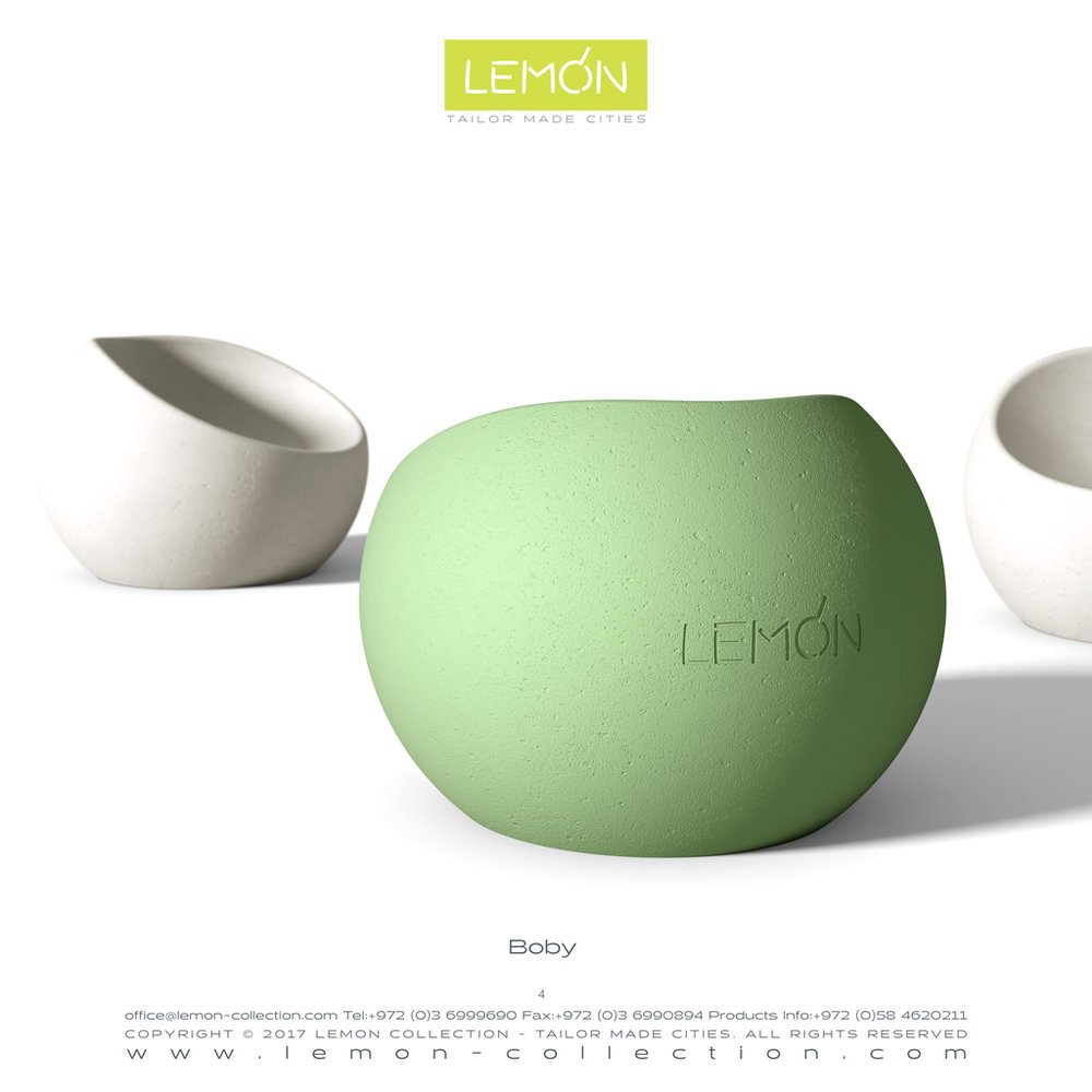 LEMON_BOOK_24.004.jpg