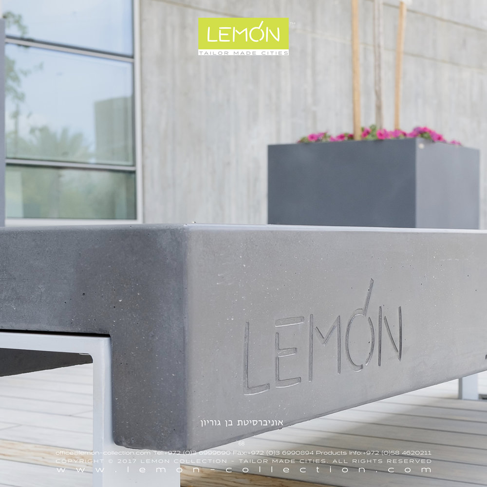 LEMON_BOOK_24.068.jpg