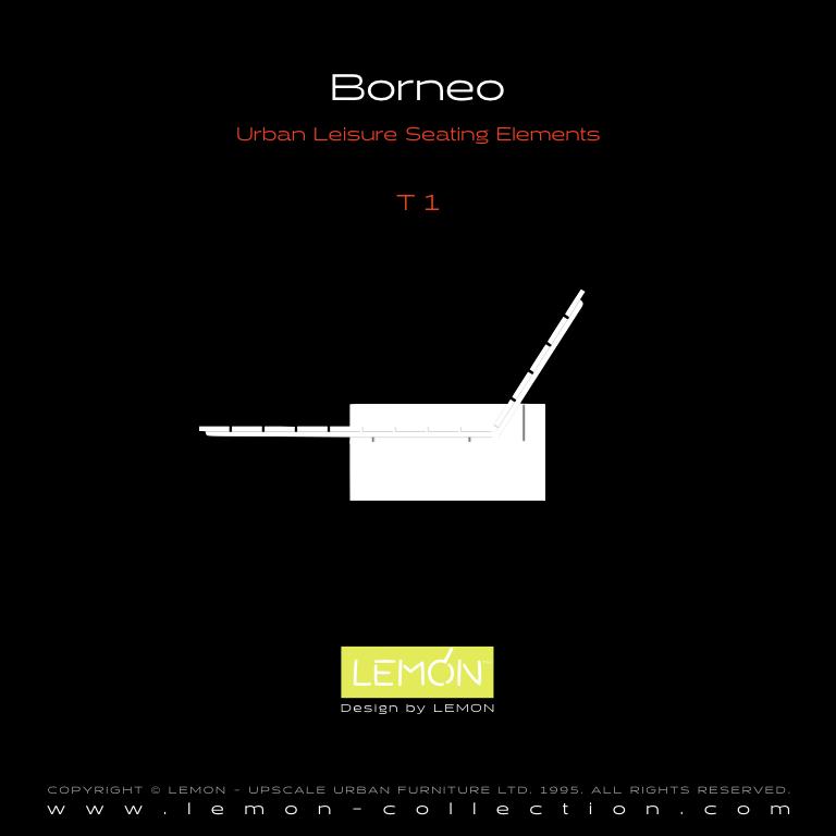 Borneo_LEMON_v1.004.jpeg