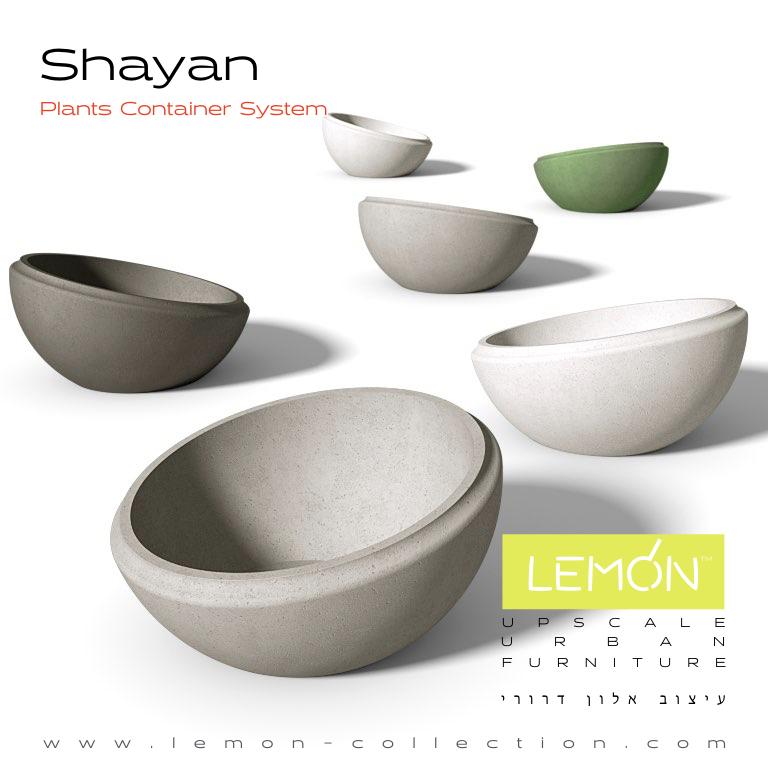 Shayan_LEMON_v1.001.jpeg