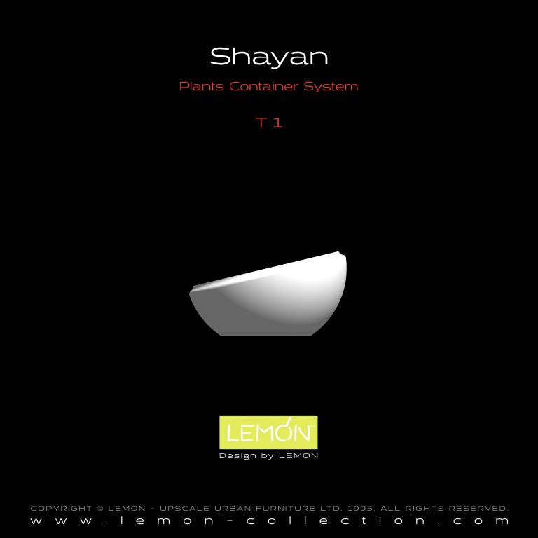 Shayan_LEMON_v1.004.jpeg