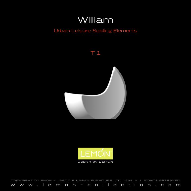 William_LEMON_v1.004.jpeg