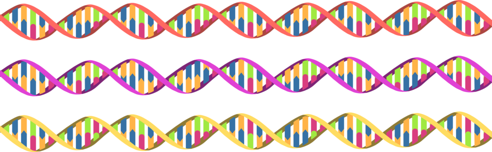 Helix DNA library (1).png