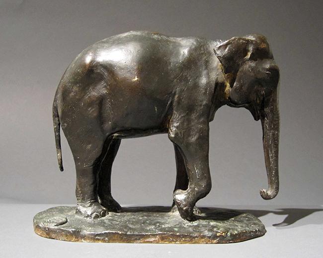 Paul Simon | Le Jeune Eléphant