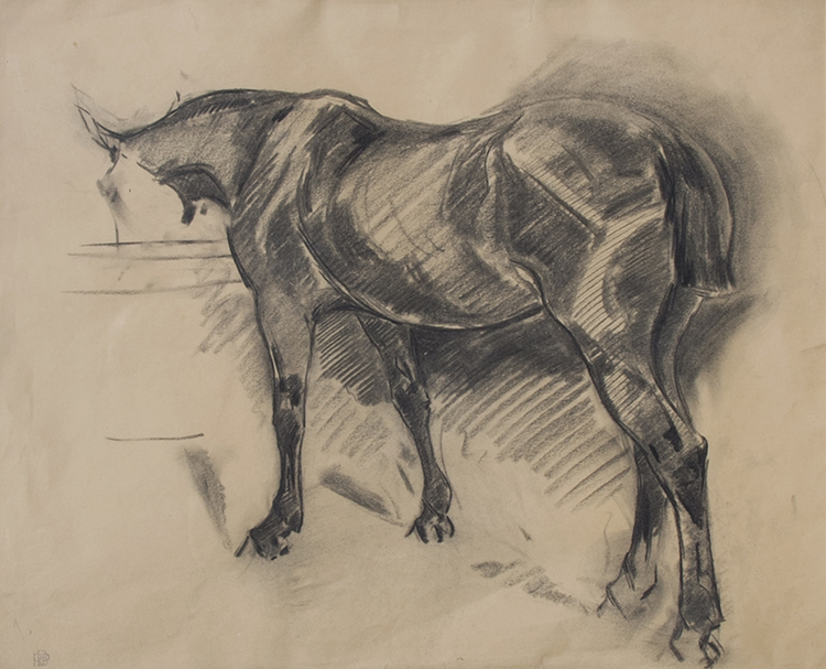 ROBERT BEVAN    Horse in a Stable   Charcoal on paper 17½ x 21¾ inches (44.5 x 55.2 cm)  SOLD