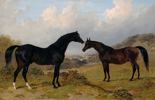 JOHN FREDERICK HERRING, SENIOR The Earl of Egremont's Camel and Lord Grosvenor's Banter Oil on canvas 18 x 28 inches (45.7 x 71.1 cm.) SOLD