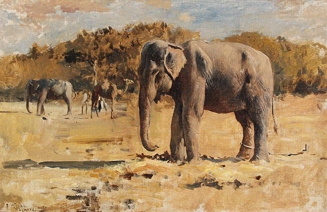 EDWIN LORD WEEKS    Elephants of Bekanir   Oil on canvas 13 x 20 inches (33 x 51 cm) $25,000 Click here for more information