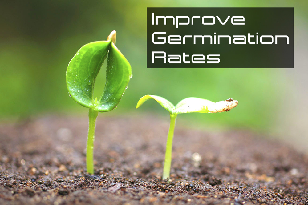 Improve Germination Rates.jpg