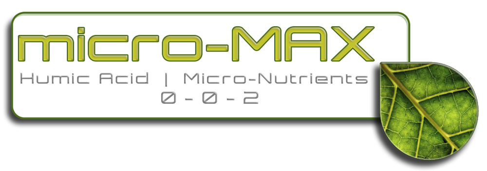 micro-MAX.jpg