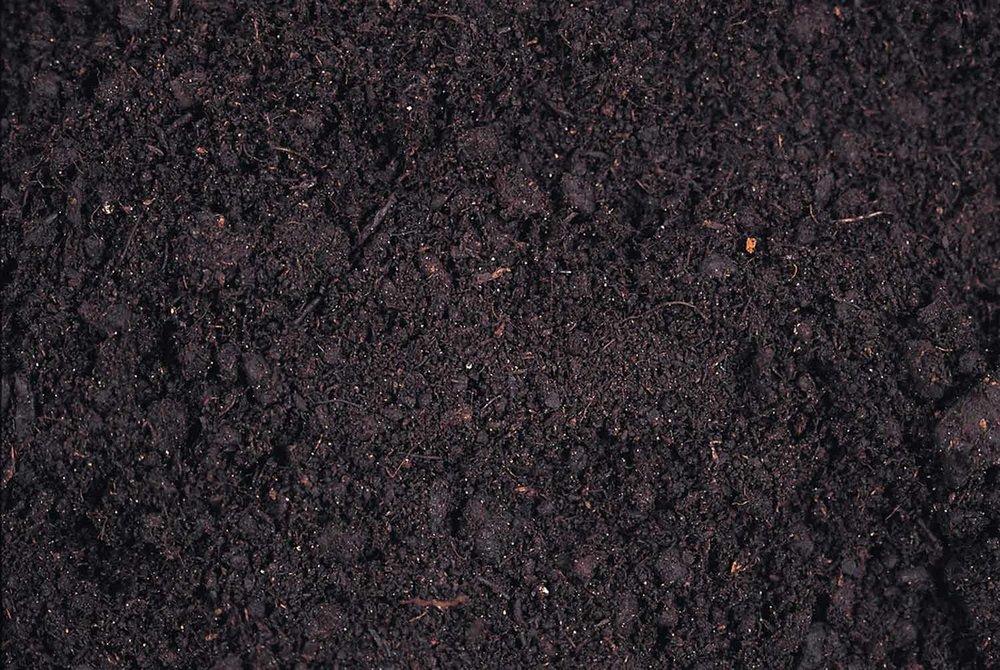 healthy+soil.jpg