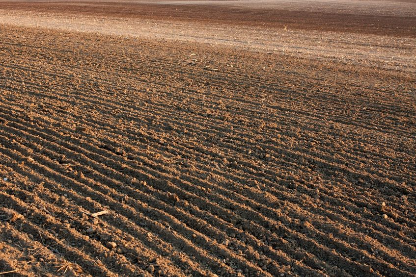 5915193-brown-fertile-plowed-soil-of-an-agricultural-field.jpg