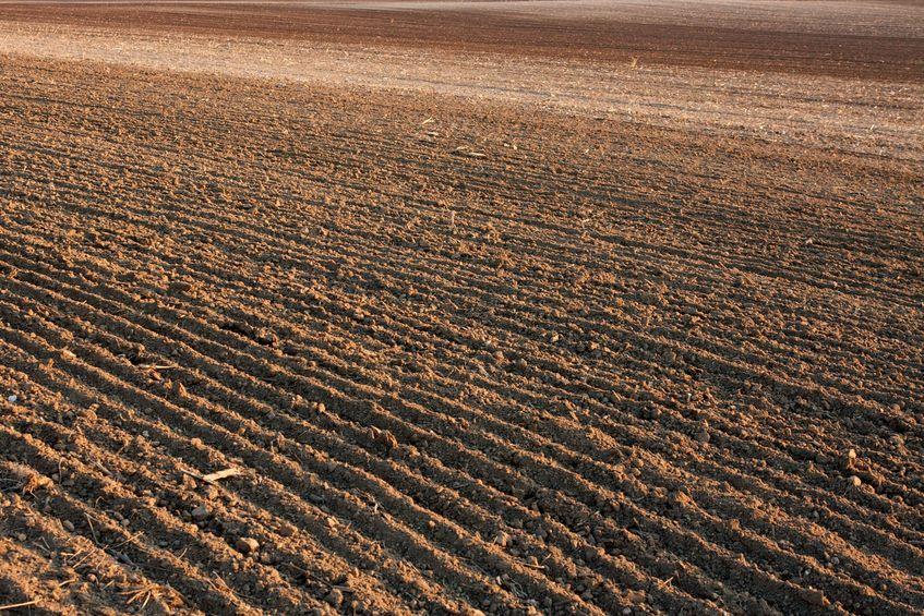 5915193-brown-fertile-plowed-soil-of-an-agricultural-field.jpg