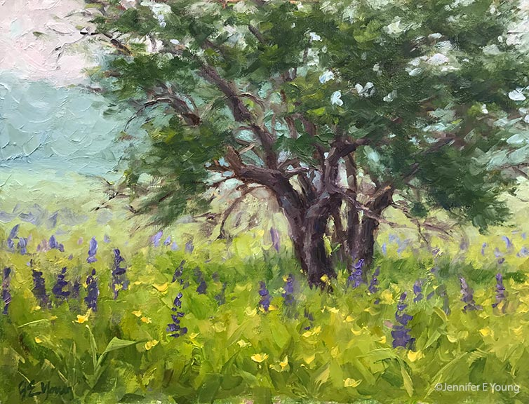 """Lupines in the Mist"", Oil on linen, 11x14"" (SOLD) ©Jennifer E Young"