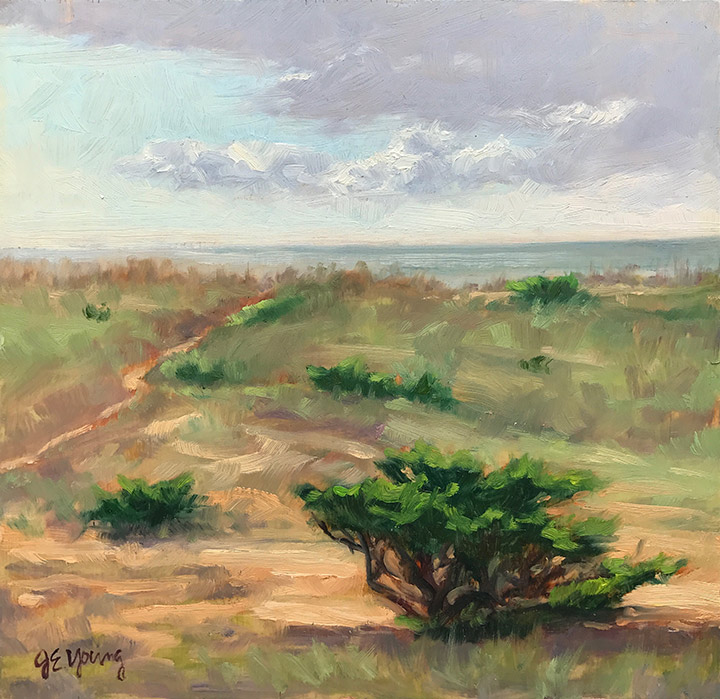 """Dunes at Salvo II"""
