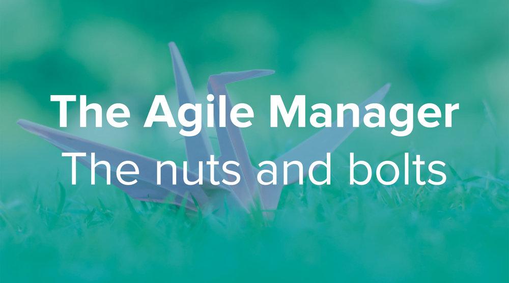 Agile Manager.jpg