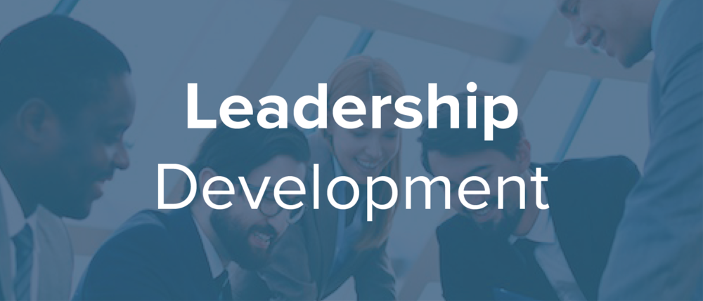 Successful organisations have leaders who connect deeply with the mission and can inspire others to engage with it. We work with leaders to deepen their self understanding, maximise their impact and create cultures that flourish and endure.
