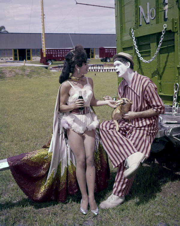 Title: Aerialist and Clown at Circus Hall of Fame - Sarasota. Date: ca. 1960. Physical descrip: 1 transparency - col. - 5 x 4 in. Series Title: Joseph Janney Steinmetz Collection. Repository: State Library and Archives of Florida, 500 S. Bronough St., Tallahassee, FL 32399-0250 USA. Contact: 850.245.6700. Archives@dos.myflorida.com