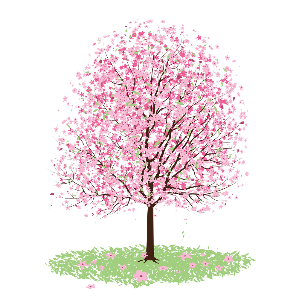 Vector - Pink Cherry Blossom Tree by DragonArt.JPG