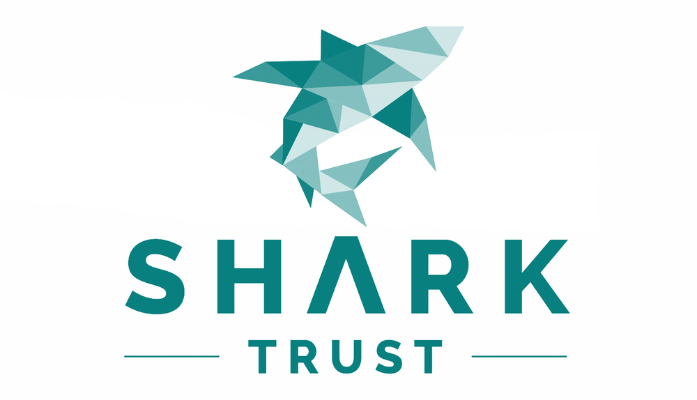 Steve Backshall Shark Trust