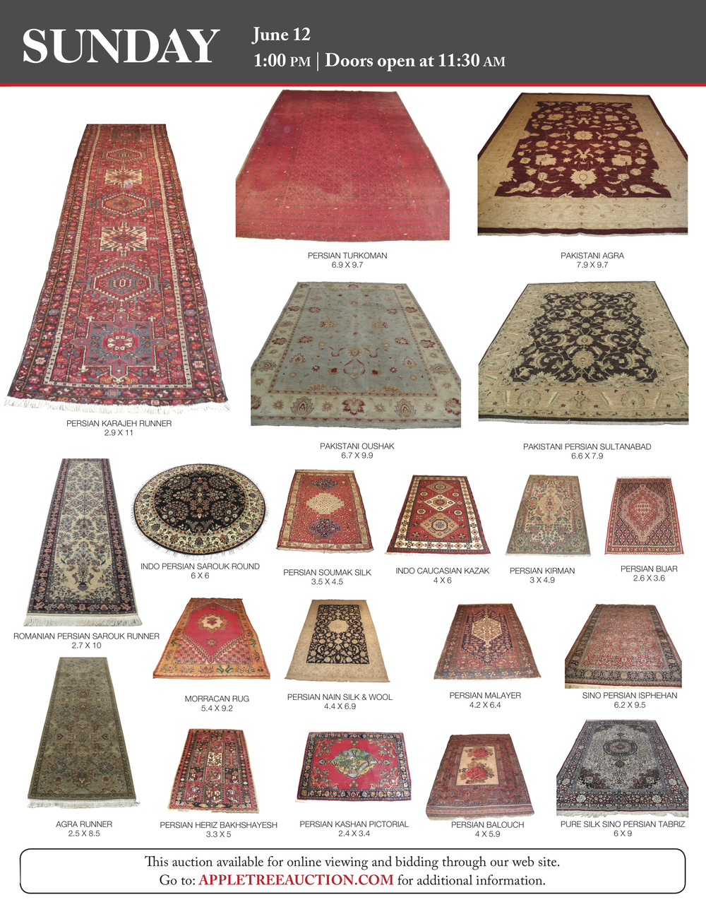 June Oriental Rug Flyer 16 high res_3.jpg