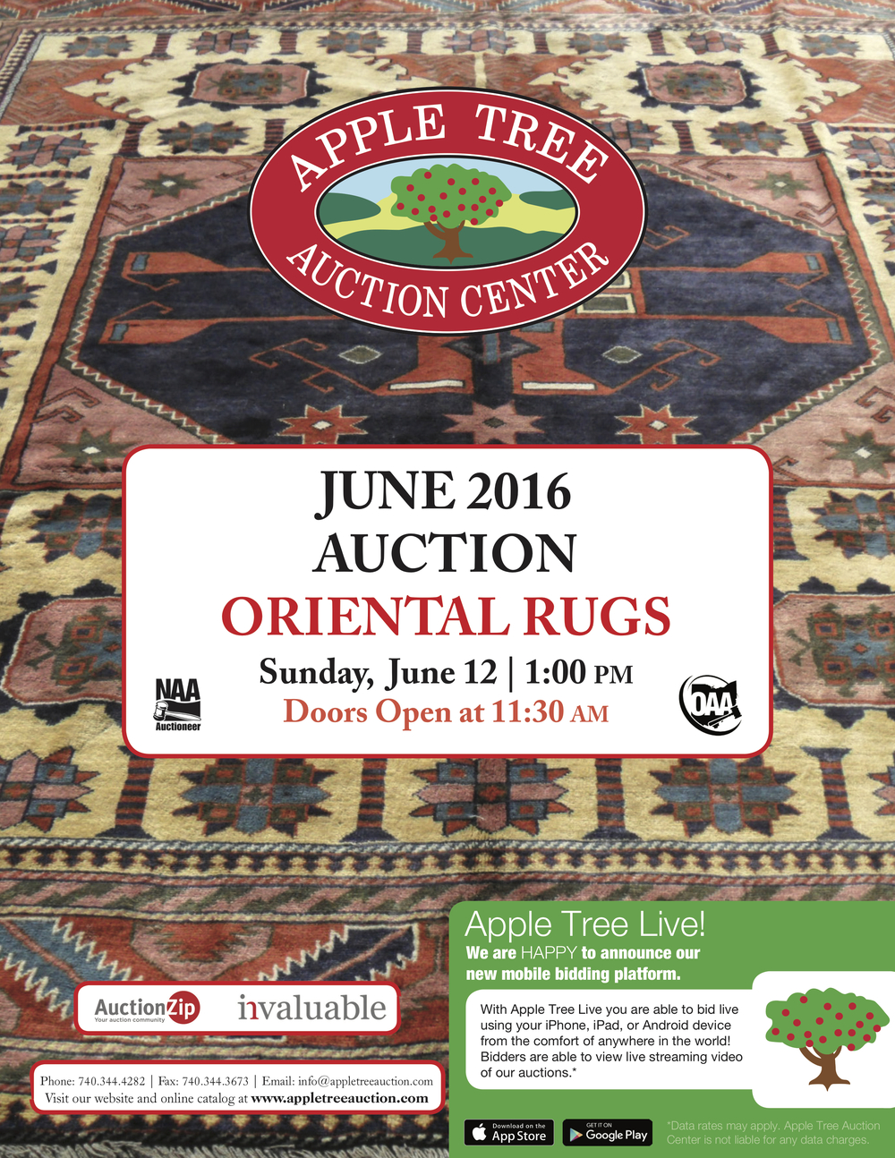 June Oriental Rug Flyer 16 high res_1.jpg