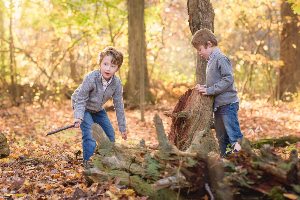 Twin boys playing in the woods. Lifestyle portrait by N. Lalor Photography. New Canaan Nature Center.