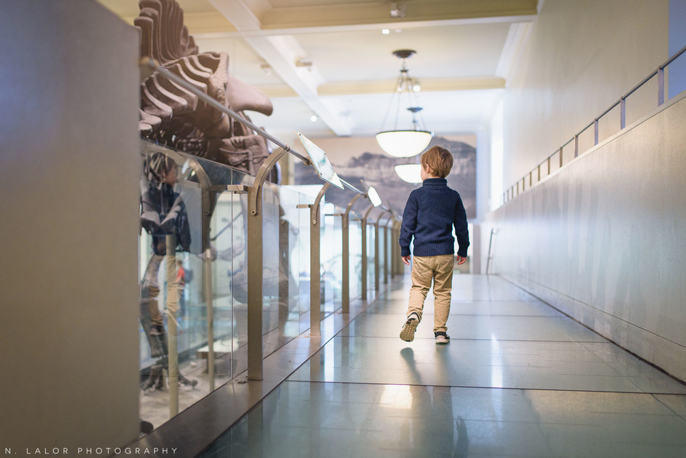 2015-12-10-museum-of-natural-history-with-graham-12.jpg