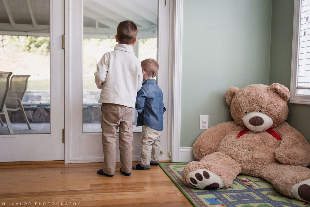 Brothers looking out to the back yard, by a large teddy bear. Photo by N. Lalor Photography.