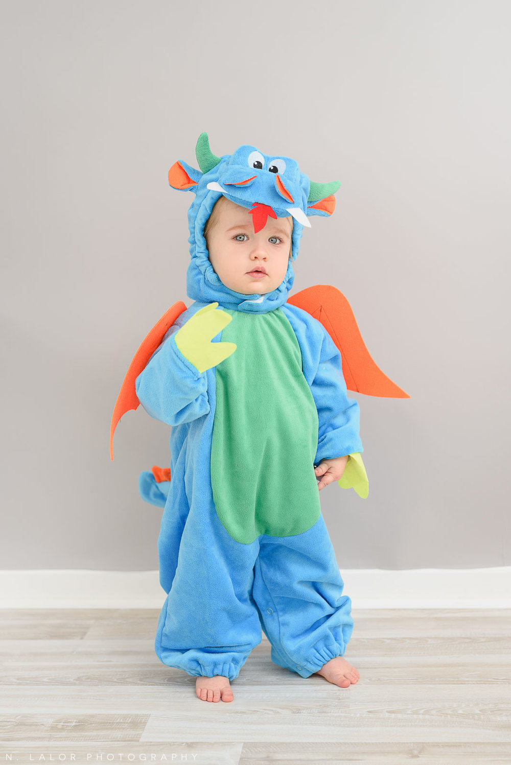 Image of toddler dressed up as a dragon for Halloween. Portrait by N. Lalor Photography in Greenwich, Connecticut.