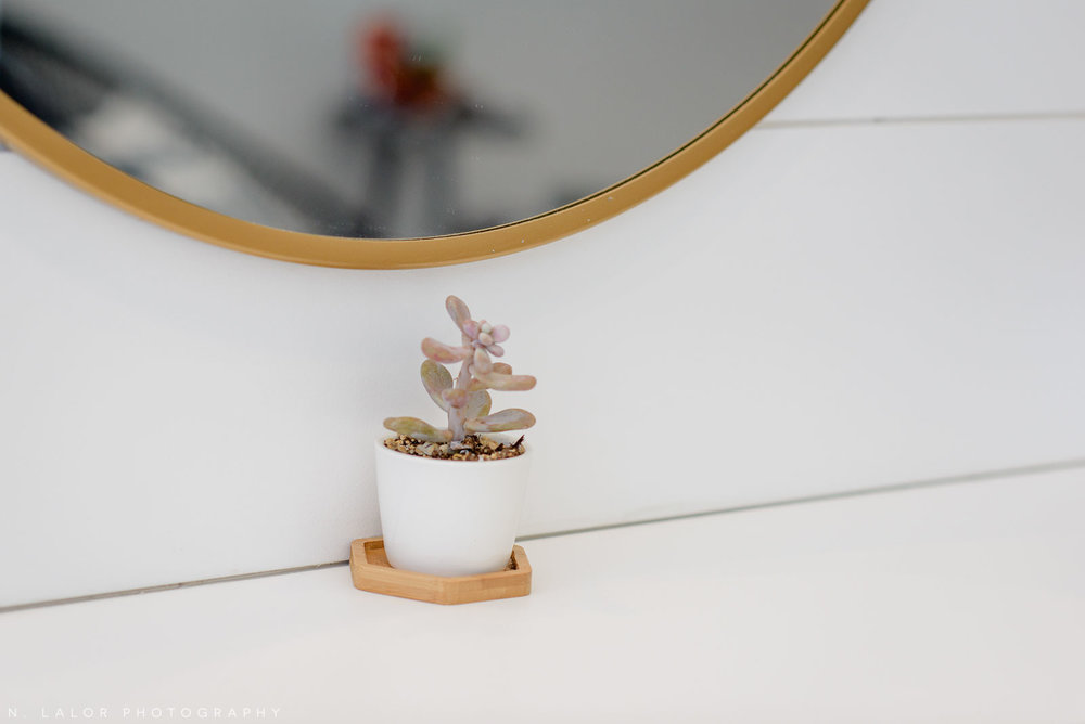 The perfect succulent detail at Haus of Pretty. Photo by N. Lalor Photography.
