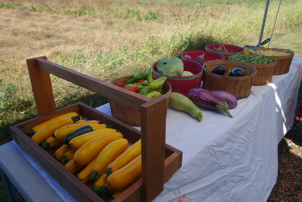 Produce from Bracco Farms at their farm stand in Pine Island NY.
