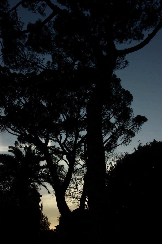4 ChiaroScuro - Sfumature.jpg
