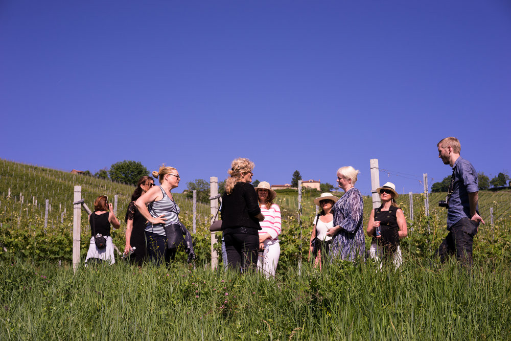 Påmeldingstur til Piemonte i mai