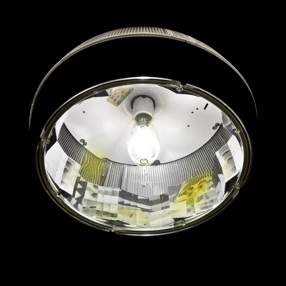 HD LIGHT-FOXCHASE-61915.JPG