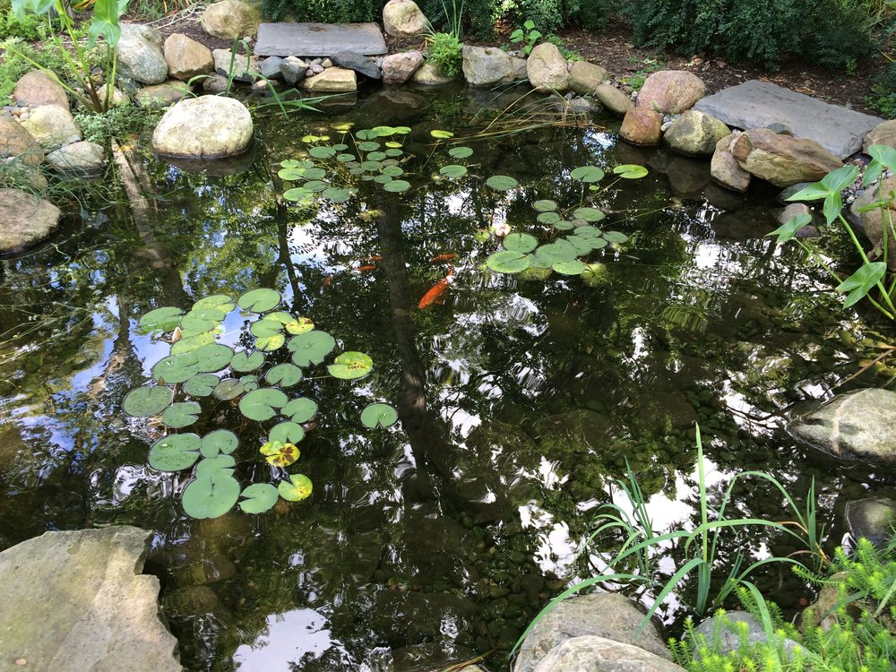 Charlevoix, MI Your local pond contractor DESIGN•BUILD•SUPPLY•MAINTAIN•REPAIR