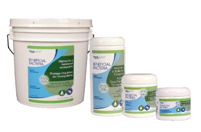 Beneficial Bacteria is Essential for Clear Garden Pond Water