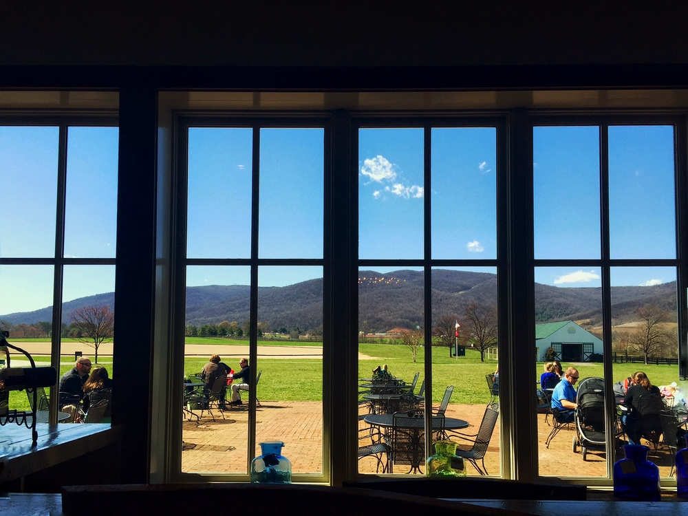 The view at King Family Vineyards. Our one day of sun!
