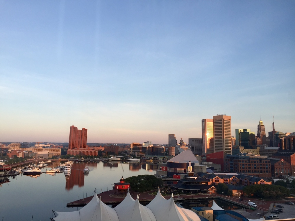 My view in Baltimore for ten days and the main reason I disappeared from ths blog... could have been worse!