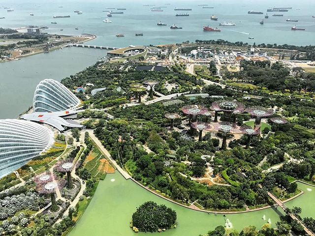 ⬆️ Gardens By The Bay from Above ⬆️