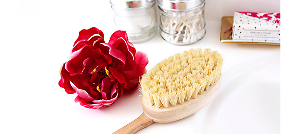 049-BLOG-DRY-BRUSHING_ARTICLE-HERO_v2.jpg