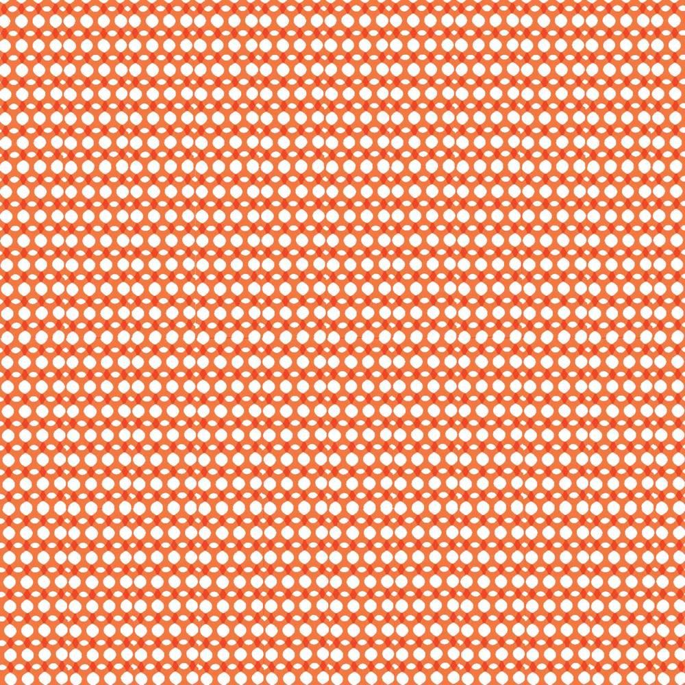 PENELOPE-clementine.jpg