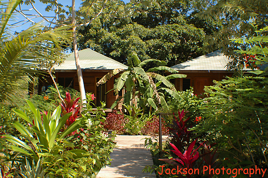 Hotel Chillies, Half Moon Bay, beach, West End, Roatan
