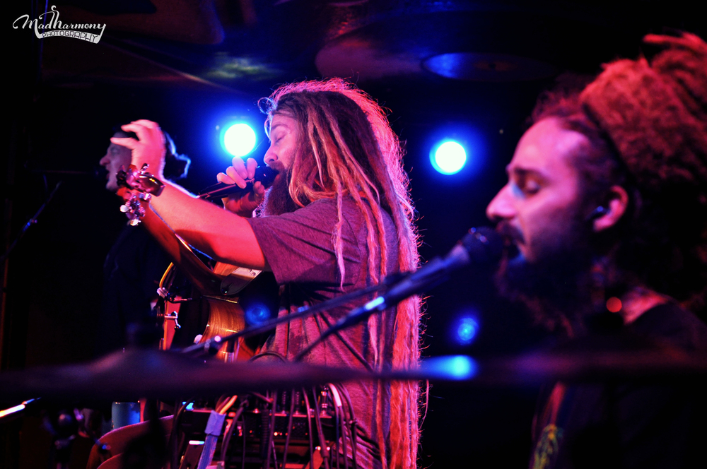Mike Love / 09.22.15 / Moe's Alley