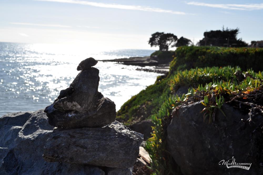 West Cliff, Santa Cruz / February 2016