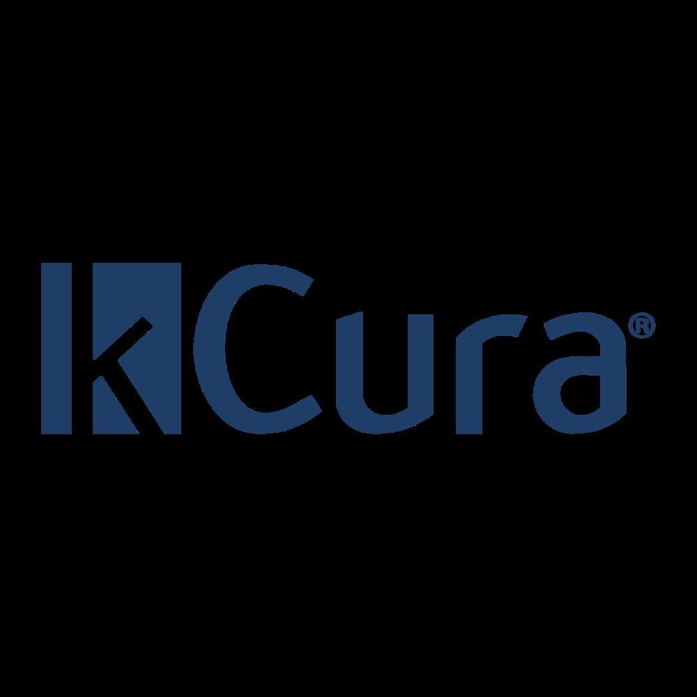kCura Technology Partner