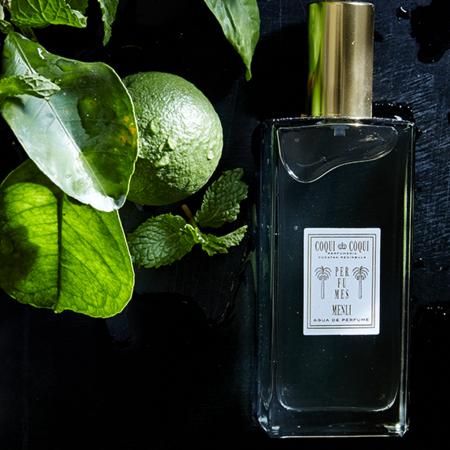 Scents — Coqui Coqui Perfumeria Yucatan Peninsula.png