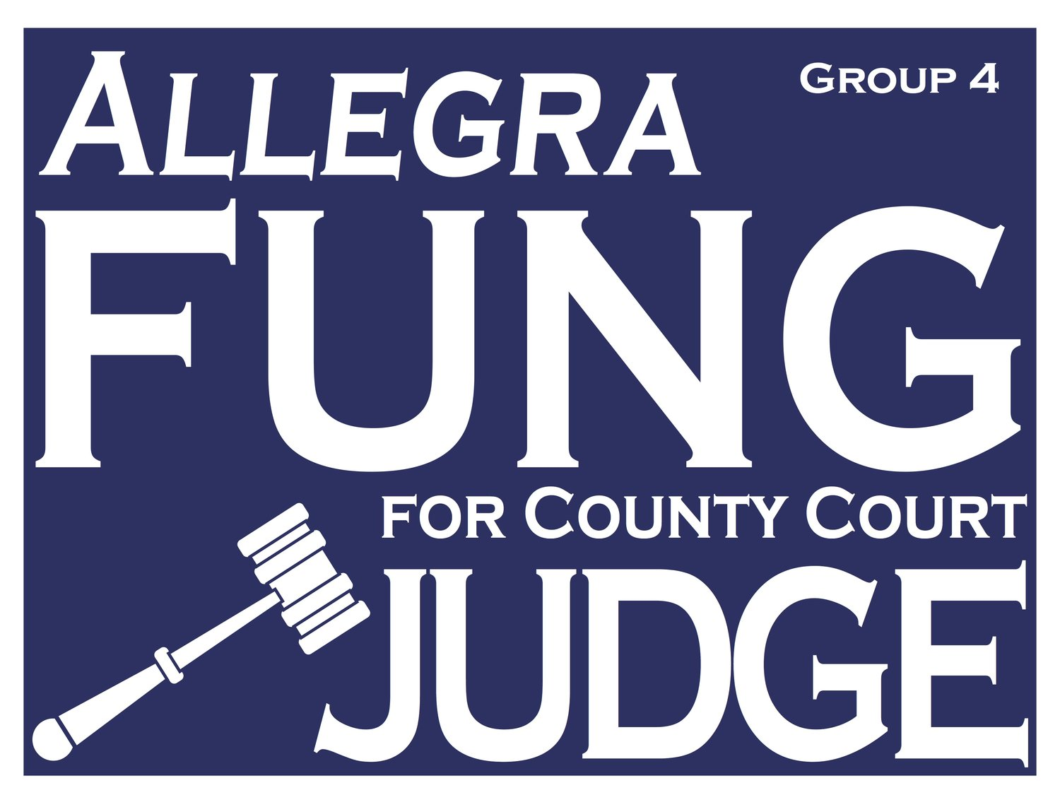 Fung for Judge 2018